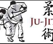Reprise du jujitsu !